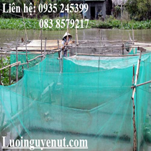 Lưới may vèo nuôi cá